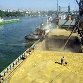 Новые таможенные технологии обработки судов с контейнерными  грузами