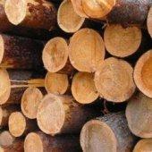 Аналитическая справка о ситуации на мировом рынке лесоматериалов