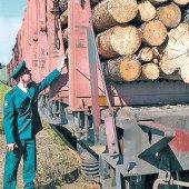 Экспорт леса должен осуществляться строго по инструкции