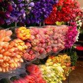 Правила таможенного оформления цветочной продукции