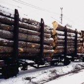 При декларировании лесоматериалов необходимо указывать методики измерений